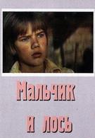 Мальчик и лось (1975)