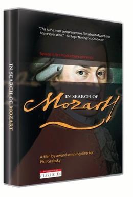 Постер фильма В поисках Моцарта (2006)