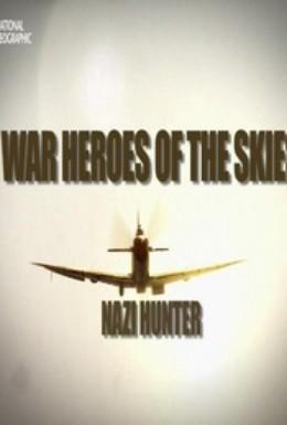 Постер фильма Воздушные асы войны (2013)