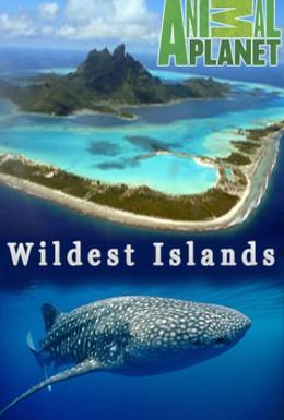 Постер фильма Неизведанные острова (2012)