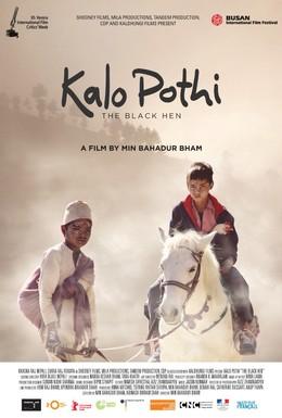 Постер фильма Чёрная курица (2015)