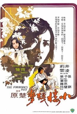 Постер фильма Запретное прошлое (1979)