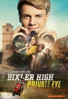 Частный детектив Бикслер Хай (2019)
