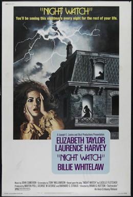 Постер фильма Ночной дозор (1973)