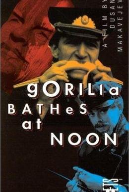 Постер фильма Горилла купается в полдень (1993)