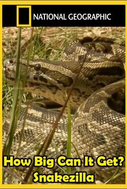 Постер фильма Гиганты мира животных. Самая большая змея (2011)