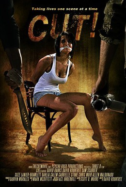 Постер фильма Снято! (2014)