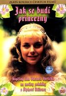 Как разбудить принцессу (1978)