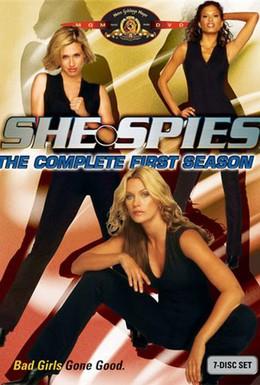 Постер фильма Шпионки (2002)
