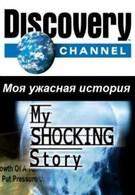 Моя ужасная история (2007)