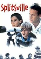 Развод и семеро детей (1999)
