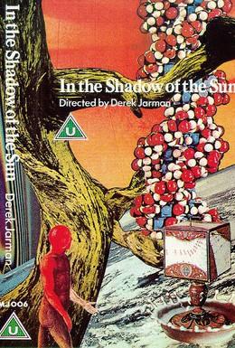 Постер фильма В тени солнца (1981)