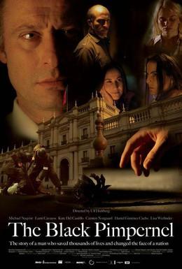 Постер фильма Черная гвоздика (2007)