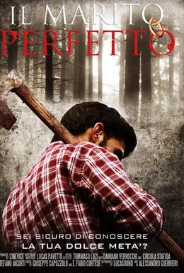 Постер фильма Идеальный муж (2011)