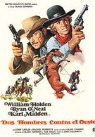 Дикие бродяги (1971)