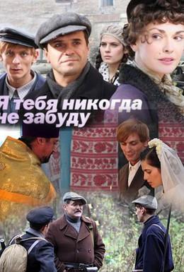 Постер фильма Я тебя никогда не забуду (2011)
