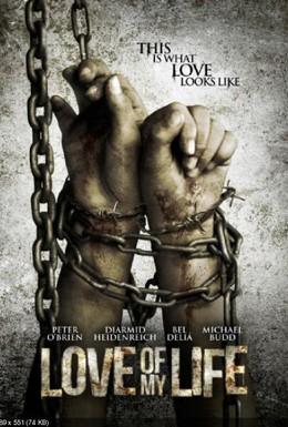 Постер фильма Любовь моей жизни (2013)