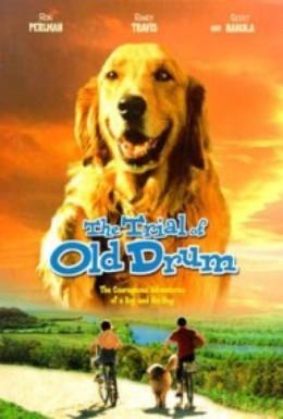 Постер фильма Дело старины Драма (2000)