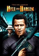 Беспорядки в Гарлеме (1973)