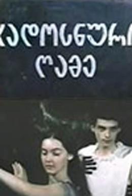 Постер фильма Волшебная ночь (1983)