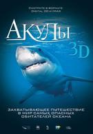 Акулы 3D (2004)