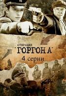 Операция Горгона (2011)