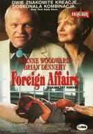Иностранные дела (1993)