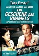 Подарок небес (2005)