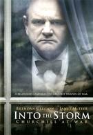 Навстречу шторму (2009)