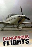 Воздушные дальнобойщики (2012)