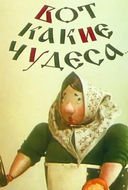 Постер фильма Вот какие чудеса (1965)