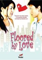 Сражен любовью (2005)