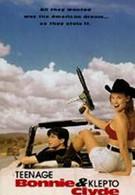 Современные Бонни и Клайд (1993)