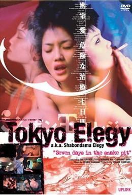 Постер фильма Шабондамская элегия (1999)