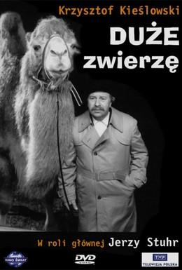 Постер фильма Большое животное (2000)