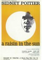 Изюминка на солнце (1961)
