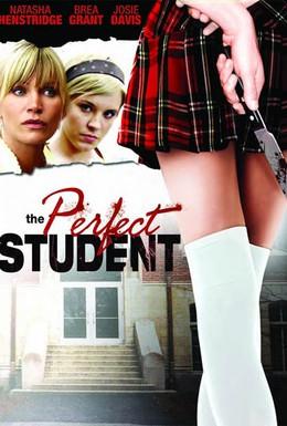 Постер фильма Идеальный студент (2011)