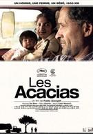 Акации (2011)