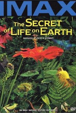 Постер фильма Тайна жизни на Земле (1993)