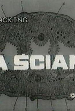 Постер фильма За стеной (1971)