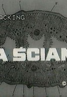 За стеной (1971)