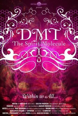 Постер фильма ДМТ: Молекула духа (2010)