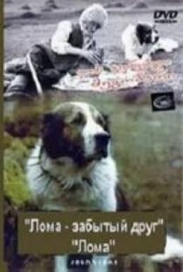 Постер фильма Лома – забытый друг (1982)
