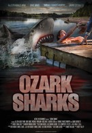 Озаркские акулы (2016)