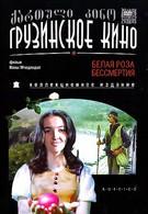 Белая роза бессмертия (1985)