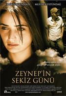 Восемь дней Зейнеп (2007)