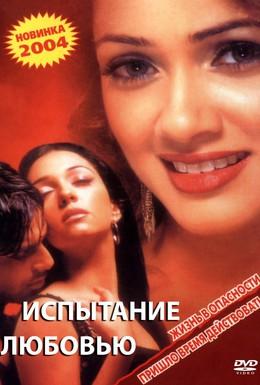Постер фильма Испытание любовью (2003)