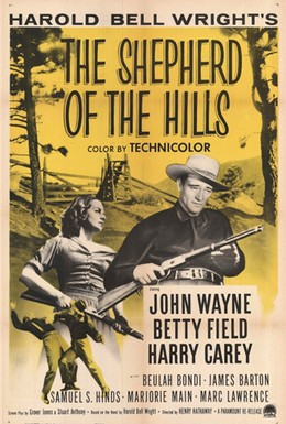 Постер фильма Ковбой с холмов (1941)