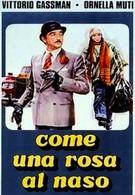 Как роза у носа (1976)