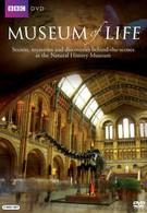 Музей жизни (2010)